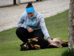 """CreaCanis Tagesworkshop """"Spielpartner Hund"""" im Wienerwald/NÖ @ ÖGV Wienerwald"""