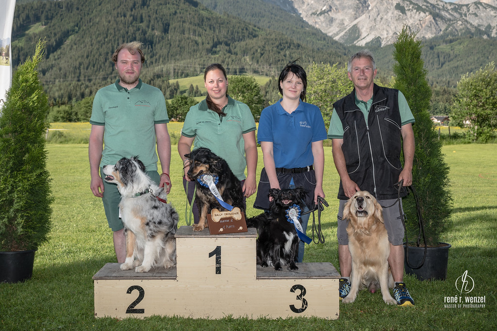Team Rally Obedience 2019