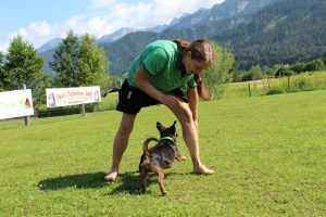 "CreaCanis Tagesworkshop ""Spielpartner Hund"" Saalfelden @ Hundeschule Saalfelden"