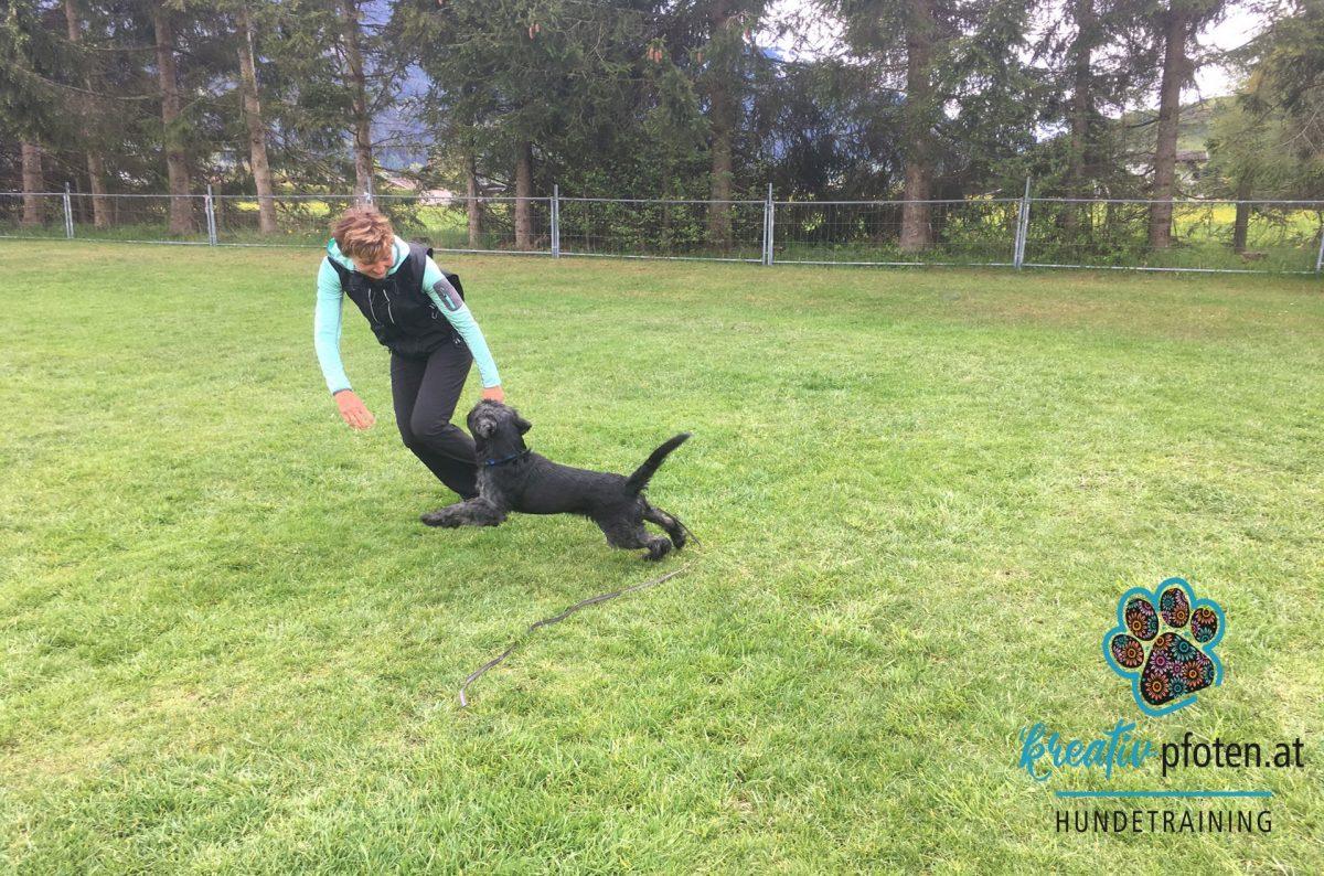 Mensch-Hund Spiel ohne Hilfsmittel