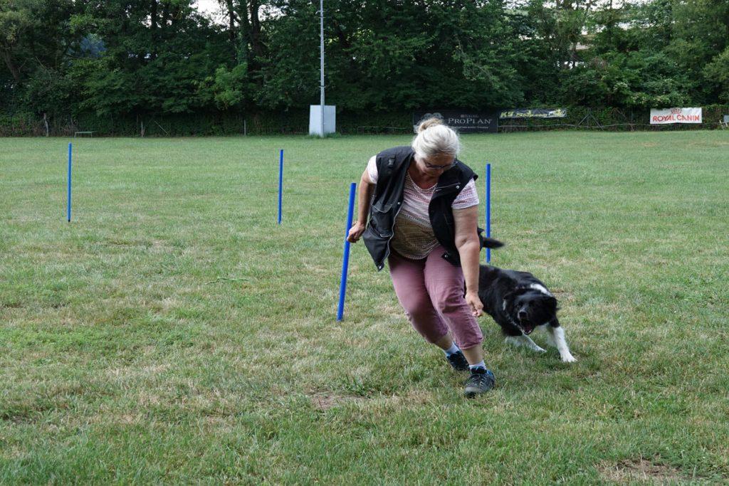 Workshop CC Spielpartner Hund 10