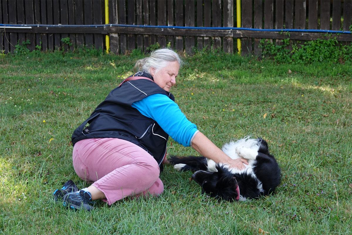 Workshop CC Spielpartner Hund