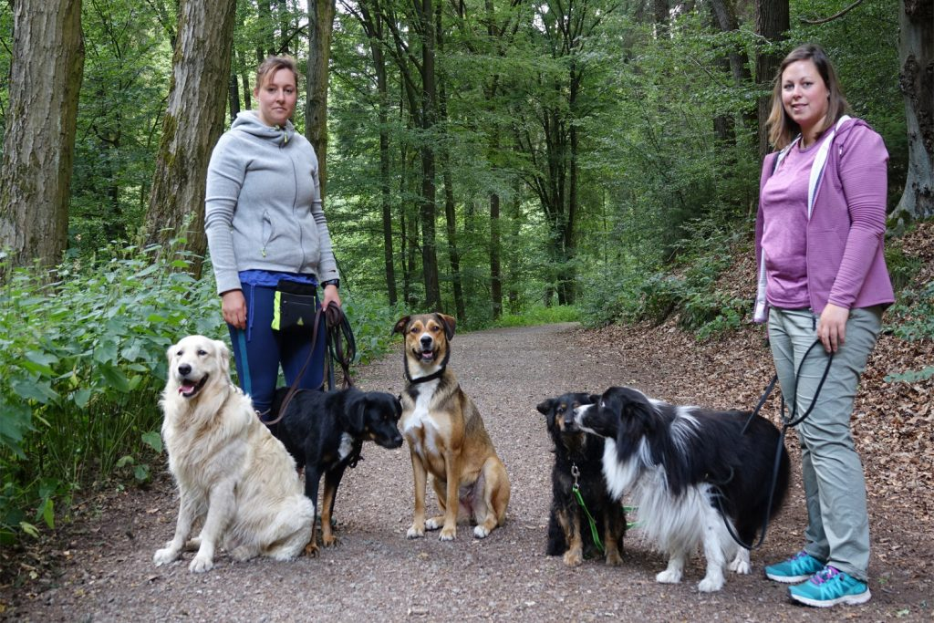 Spaziergang in der Gruppe - entspannt möglich!