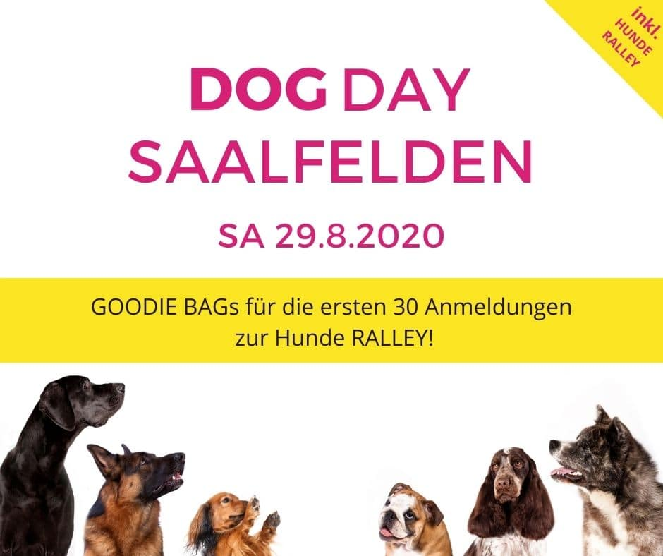 Goodie Bags beim Dog Day